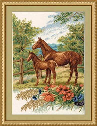 Лошади | Просмотров: 391