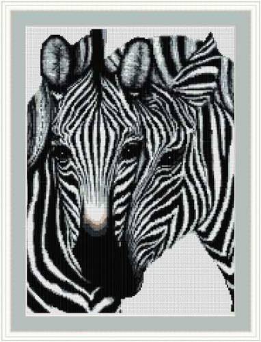 Зебры | Просмотров: 414