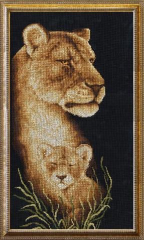 Дикие кошки: львы, барсы,