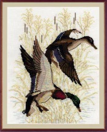 Утки и гуси | Просмотров: 340