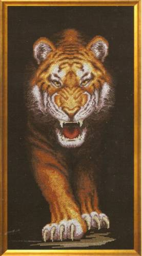 Тигры | Просмотров: 419