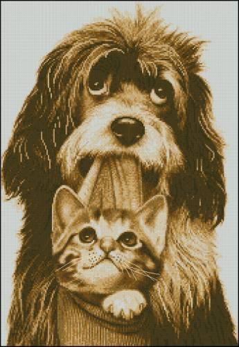 Собаки | Просмотров: 505